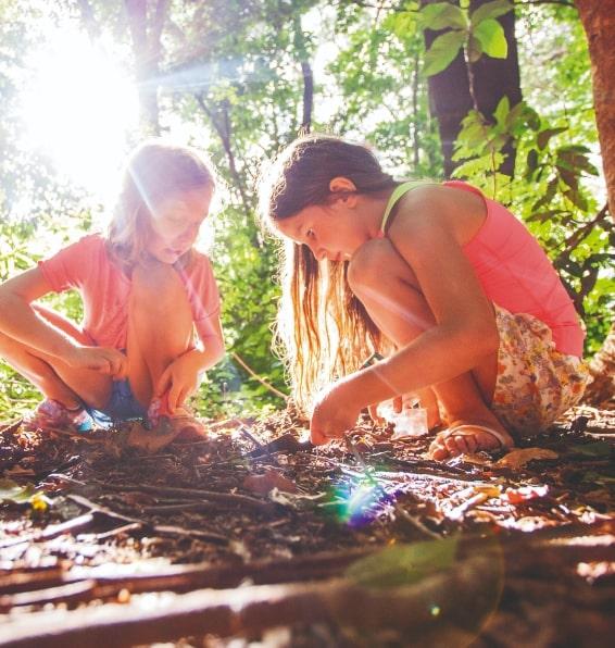 Integrando amizades e aprendizagem
