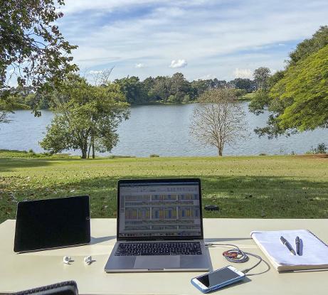 Trabalho e ensino à distância